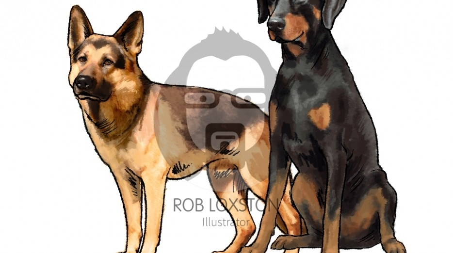 Dogs by Rob Loxston
